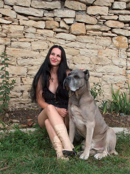 Cane Corso Of Bajer About Us